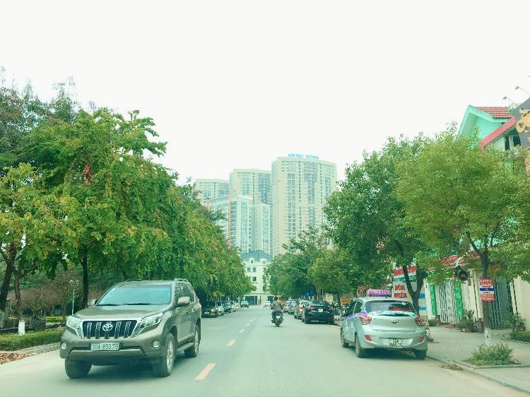 Bán Liền kề phân khu LKCVP, mặt đường 24m, nhà hướng Đông, [#H2879.2156]